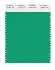 Amazon.com: PANTONE SMART 16-5907X Color Swatch Card, Mint.