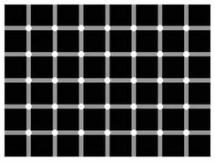 There are NO black dots anywhere in the image. Your brain gets confused and your eyes create the black dots inside the white empty spaces!