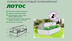 Парник Лотос из поликарбоната, идеальный вариант для вашего хозяйства. Купить теплицу из поликарбоната от производителя. Ростовская область