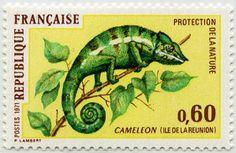 Protection de la nature - Caméléon - Timbre de 1971