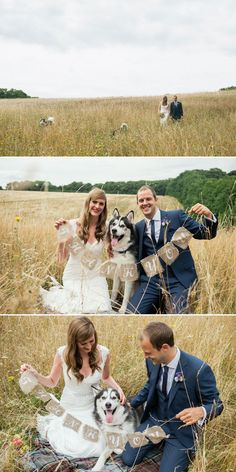 Include your husky in the wedding shoot!