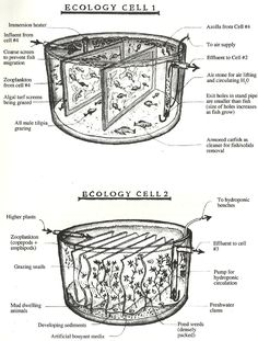 Water Purification Systems - Ecology Cells