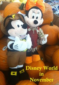 Disney World Tips / Disney World In November - Crowd warnings, special events, and ride closure information in one easy list at http://www.buildabettermousetrip.com/wdw-november-crowds-closures-special-events/