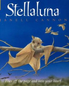 Stellaluna by Janell Cannon..oh my goodness...I used to have this book and read it all the time! Love it