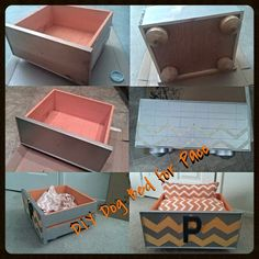 Drawer from an office hutch - FREE (from work) Furniture Feet (actually parts taken off a coffee table) - FREE (from work) Metallic Silver Craft Paint, Pure Pumpkin Orange Craft Paint, Light Orange. Diy Dog Bed, Diy Bed, Pet Furniture, Furniture Stores, Furniture Repair, Oaks Furniture, Stanley Furniture, Furniture Assembly, Furniture Hardware