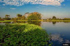 EDSON KEIROZ imagens da amazônia
