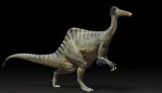 "10.23.2014 This is Deinocheirus mirificus, which translates to ""unusual, horrible hand."" He's a new, old creature announced by the paleontologists at the Institute of Geoscience and Mineral Resources (Kigam) in South Korea. In the 1960s, scientists discovered excessively long arms belonging to a dinosaur of unknown type. They couldn't find the rest. However, as the BBC reports, now the rest of its body has been disinterred. See video."