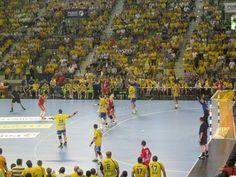 Vive handball
