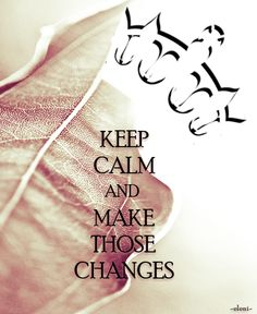 KEEP CALM AND MAKE THOSE CHANGES - created by eleni
