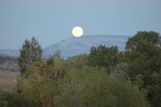 Moon Rising!