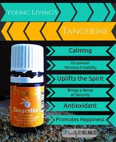 Young Living's Tangerine. Calming, occasional nervous irritability, uplifts the spirit, brings a sense of security, antioxidant, promotes happiness. #essentialoils #undertwentydollars #heartfelthullabaloo