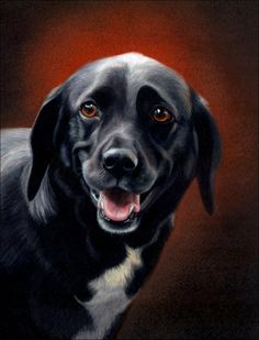 Another dog - Amazing Animal Drawings From Great Pencils  ~ Super Talent !!!