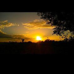 I Liked this Instagram: #beautifulnature #sun #sunset #lovesunset #naturelovers #naturelover #naturaleza #naturemother #instaphoto #natureinstant #instaphoto #beautiful #gratidão #pordosol #instasunsets #afternoon #instagood #instadaily #instalike #igdaily #sunsets #gratitude #nature #naturezaperfeita #beauty #brasil #brazilian #thanksgod #instasun #harmonia_com_o_universo by dorasantos8