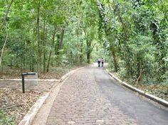 Ingá Park - Maringá, Paraná
