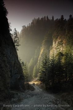 Hiking trail leads surrounded by steep walls of a gorge in the Pieniny Mountains. Mountain Photography, Landscape Photography, Places To Travel, Places To See, Beautiful World, Beautiful Places, Visit Poland, Carpathian Mountains, Historical Monuments