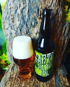 """From Driftwood Brewing in Victoria on Vancouver Island comes their """"Sartori Harvest IPA"""" a fresh hopped beer. For the review click on the link below.   http://wp.me/p2vssO-ewt"""