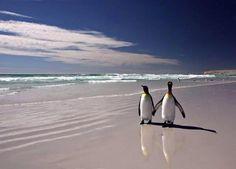 Amoure en la playa...