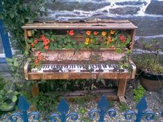 Flowers and foliage have transformed these houses and other abandoned buildings, including the rotting piano that is home to a nasturtium garden. The Piano, Piano Bar, Piano Keys, Vieux Pianos, Chillout Zone, Old Pianos, Abandoned Buildings, Abandoned Places, The Fresh