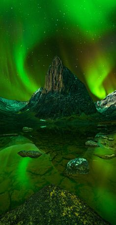 Northern Lights in the Wilderness (the Yukon, Canada)