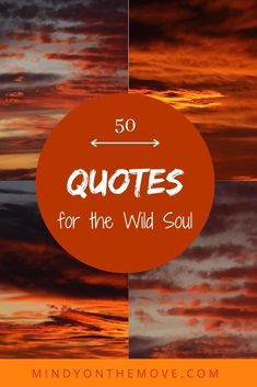 In this post, I'll share fifty quotes that have specifically emboldened, enlightened and enriched my wild soul. These are words that have, in one way or another, made a lasting impact on me – words that I live by. #quotes #quotestoliveby  #wordsofwisdom #naturelovers #travelquotes #travelquotesinspirational #nomadlife #wanderlustquotes #wordstoliveby #gypsy #wild #wildwomansisterhood #quoteoftheday #inspiration