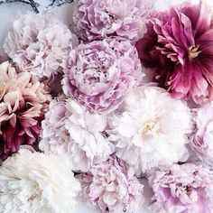 "coolchicstylepensiero:  ""Images of inspiration in Lavender, Lilac and Mauve  """