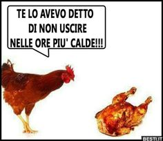Te lo avevo detto   BESTI.it - immagini divertenti, foto, barzellette, video Italian Memes, Married With Children, Lost In Space, Good Mood, Really Funny, Funny Images, Funny Texts, Haha, Animals