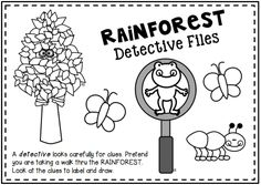 Rainforest Activities for Primary Learners. Learn about the rainforest with activities, posters, rainforest animal pictures, writing, and more.