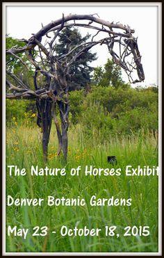Mille Fiori Favoriti: The Nature of Horses Exhibit at the Denver Botanic Garden