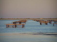 Aux alentours de la résidence - Marseillan Plage La Grenadine, Villa, Languedoc Roussillon, France, Coins, Beach, Water, Travel, Outdoor