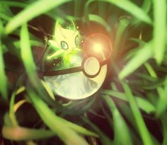 un-artiste-dresseur-de-pokemon-realise-des-illustrations-de-pokeballs-ultra-realistes15