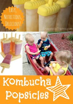 Need a new snack idea for the kids? How about kombucha popsicles? Easy, very nutritious and always on hand! Add in fruit and it's like sparkling cider -mmm! Kombucha Recipe, Kombucha Tea, Clean Recipes, Raw Food Recipes, Kombucha How To Make, Making Kombucha, Nourishing Traditions, Water Kefir, Healthy Kids