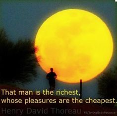 Quote about wealth Henry David Thoreau