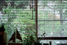 浅本 充さん 『好きなものに囲まれた、人が集まる家』 / INTERVIEWS / LIFECYCLING -IDEE-