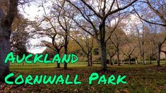 Autumn Scenes, Auckland, Cornwall, The Creator, Neon Signs, Park, Feelings, Youtube, Travel