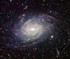 7 cursos grátis para você aprender astronomia na internetO que são as 'Luas de Sangue'?GoFor: recrute drones através dePapiro que menciona 'esposa de
