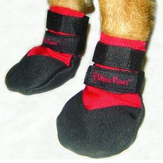 """Durable Dog Boots - Black, X-Large (4"""") - Frontgate"""