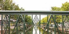 De gemeente Den Haag heeft niet voldoende kunnen aantonen dat het kappen van de bomen noodzakelijk is. Zo oordeelt de rechter in een uitspraak over de bomen aan de Veenkade die gekapt dreigen te worden. De bewonersorganisatie van het Zeeheldenkwartier, de Groene Eland, stapte deze zomer naar de rechter om te voorkomen dat de bomen […]