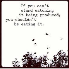 #vegan logic