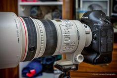 Canon 1DX Photography Gear, Canon Eos, Photo Galleries, Movie, Fotografia