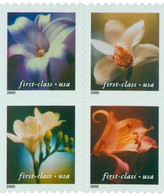 Lillies Lily Garden, Going Postal, 34c, Flower Power, Mint, Stamps, Flowers, Plants, Painting