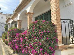Nieuw bij BBNerja, een mooi, recent gerenoveerd huis op Punta Lara Nerja met zwembad voor de deur! De middelandse zee is op loopafstand, en restaurants op 5 minuten. Dit huis heeft een ruime...