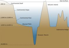 The Ocean Floor - Layers of Learning