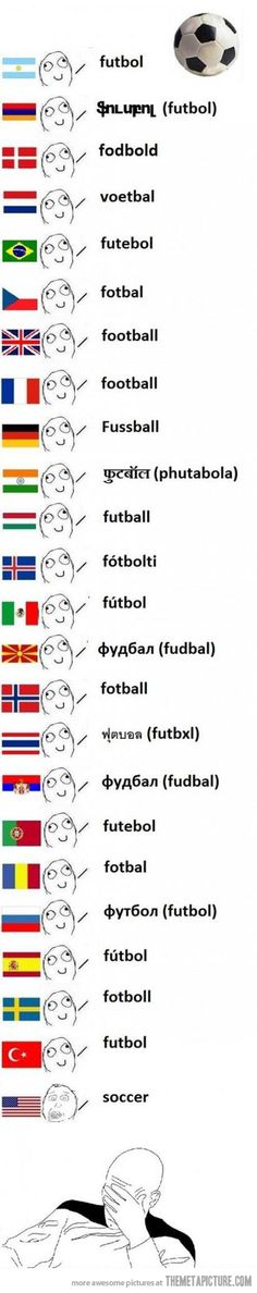 Linguistic differences - The Meta Picture