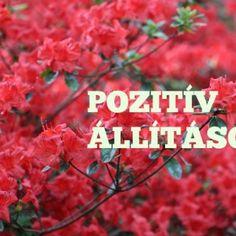 """Ha hiszel abban a kijelentésben, hogy """"Az vagy, amit gondolsz"""", akkor tudod, hogy az életed nagymértékben függ a gondolataidtól. Gondolatainkat szavakká, tettekké alakítjuk át, és ezek cselekedetek formájában nyilvánulnak meg. Ha pozitív gondolataink vannak, akkor egy idő után úgy fogjuk érezni, hogy semmi sem lehetetlen, sikeresek leszünk, és számunkra a legteljesebb, boldog életet fogjuk élni. Stronger Than Yesterday, Change My Life, Positive Vibes, Destiny, Mantra, Motivational Quotes, Spirituality, Health Fitness, Mindfulness"""