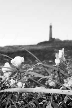 #photography #lighthouse #pigeonpoint