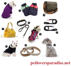 Petloversparadise.net is the best online pet shop offering Pet Jewelry Online services. Want to buy cute jewelry online? Then explore our pet store. visit: https://petloversparadise.net/collections/dog-gear-and-accessories