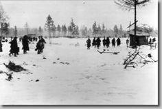 En combateAl combate. Krasnyi Bor, 1943 (FDA)