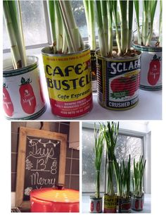 pine cone place is so brilliant..love the cans!