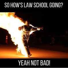 Too all the future lawyers working hard in law school you WILL survive lol stay focused and motivated! Make sure to stay focused you can do it! Law School Memes, Student Memes, Student Life, Funny Animal Quotes, Hilarious Animals, Lawyer Quotes, Legal Humor, Teenager Quotes, Teenager Posts