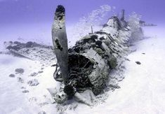 Underwater Corsair Plane Wreck from WW2. Photo by Justin Branam [OS] [640  443]